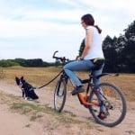 Bikejoring – nasze wakacyjne odkrycie