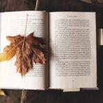 7 wymarzonych książek na jesienne wieczory